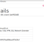Debian checkpoint VPN client snx install instalacion ubuntu linux mint mx linux