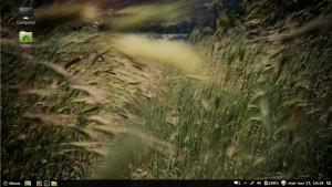 Linux Mint 14 escritorio cinnamon