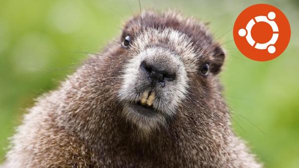 Ubuntu 18.04 bionic beaver name code nombre código