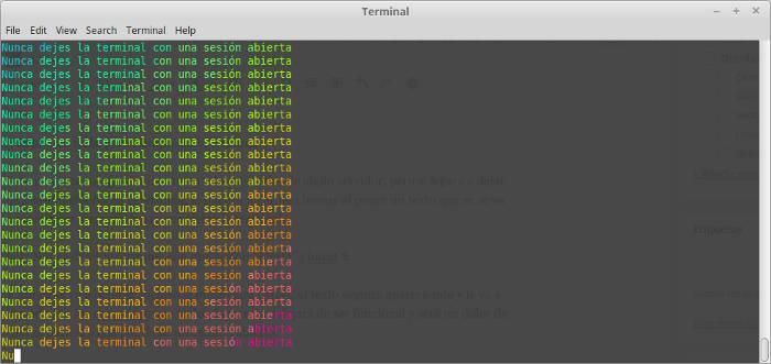 texto infinito en una terminal que deja de funcionar